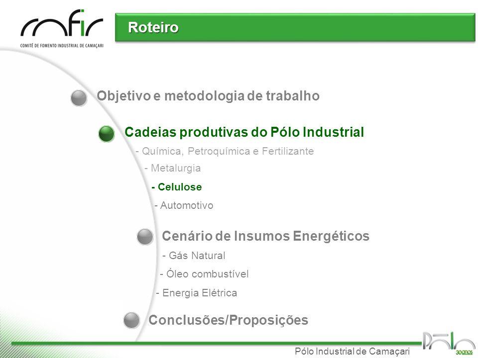 Pólo Industrial de Camaçari Cadeias produtivas do Pólo Industrial Roteiro - Química, Petroquímica e Fertilizante - Metalurgia - Celulose - Automotivo