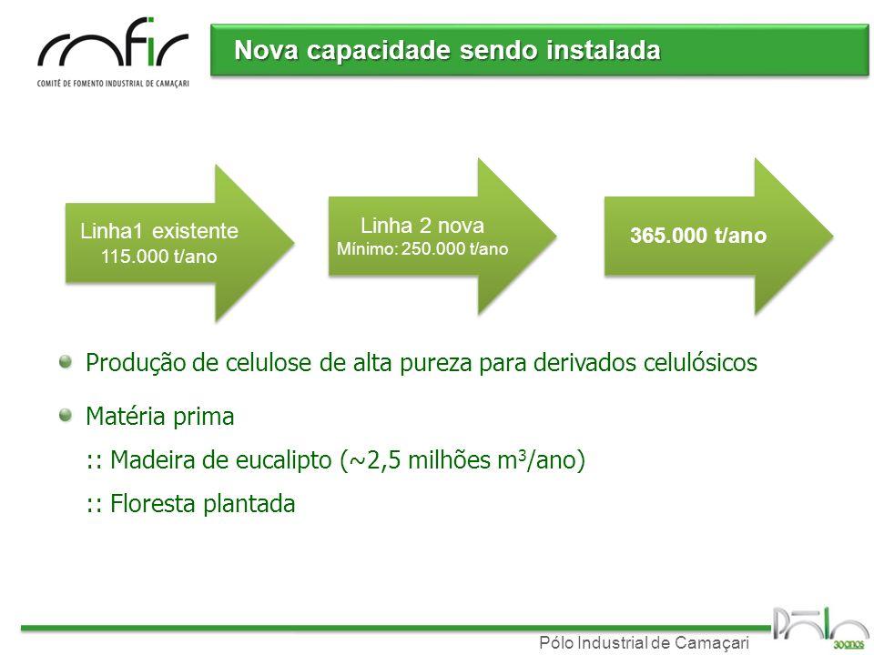 Pólo Industrial de Camaçari Nova capacidade sendo instalada Linha1 existente 115.000 t/ano Linha1 existente 115.000 t/ano Linha 2 nova Mínimo: 250.000