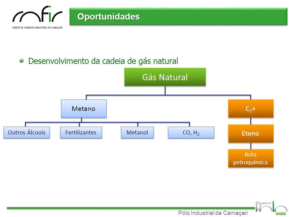 Pólo Industrial de Camaçari Oportunidades Desenvolvimento da cadeia de gás natural Gás Natural Metano C2+C2+ C2+C2+ Metanol Fertilizantes Outros Álcoo