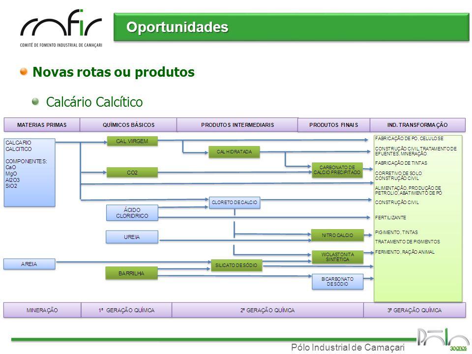 Pólo Industrial de Camaçari Novas rotas ou produtos Calcário Calcítico Oportunidades