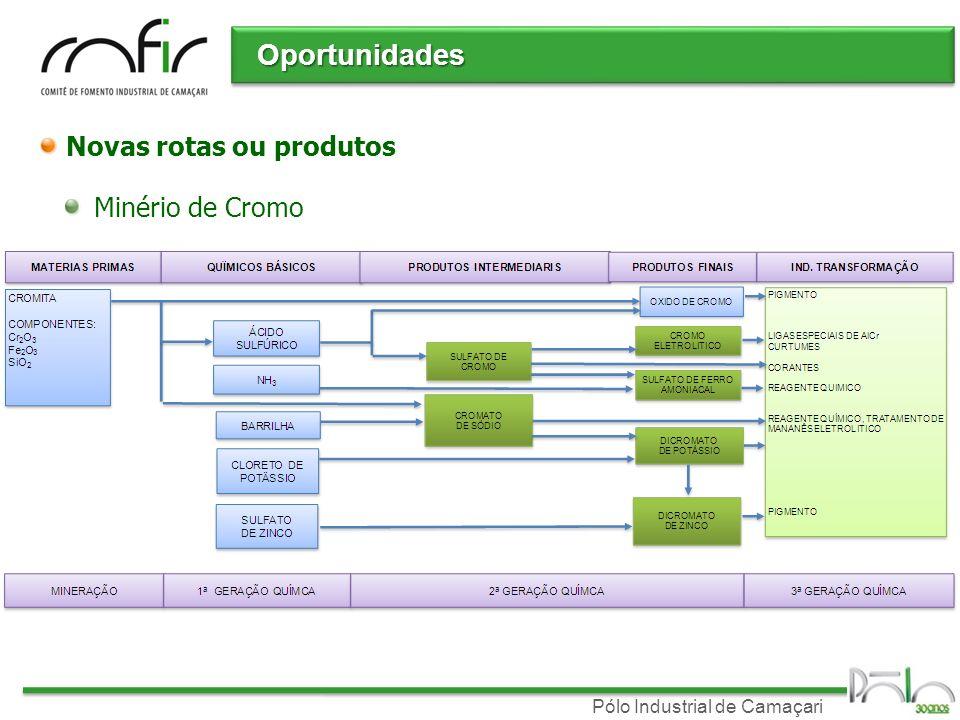 Pólo Industrial de Camaçari Novas rotas ou produtos Minério de Cromo Oportunidades