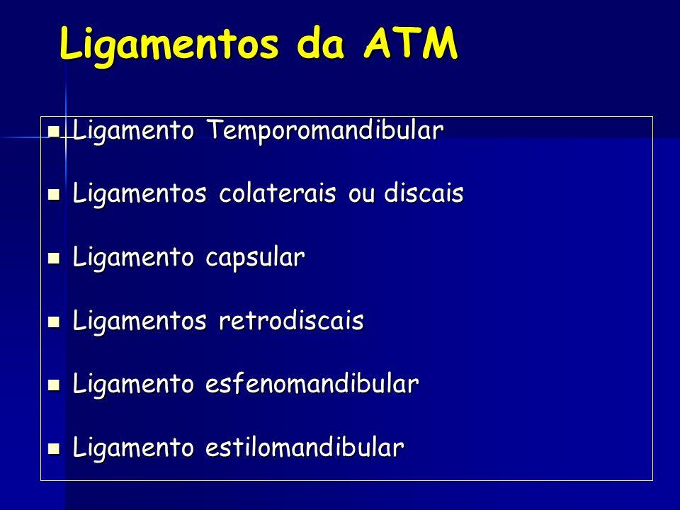 Ligamentos da ATM Ligamentos da ATM Ligamento Temporomandibular Ligamentos colaterais ou discais Ligamento capsular Ligamentos retrodiscais Ligamento esfenomandibular Ligamento estilomandibular