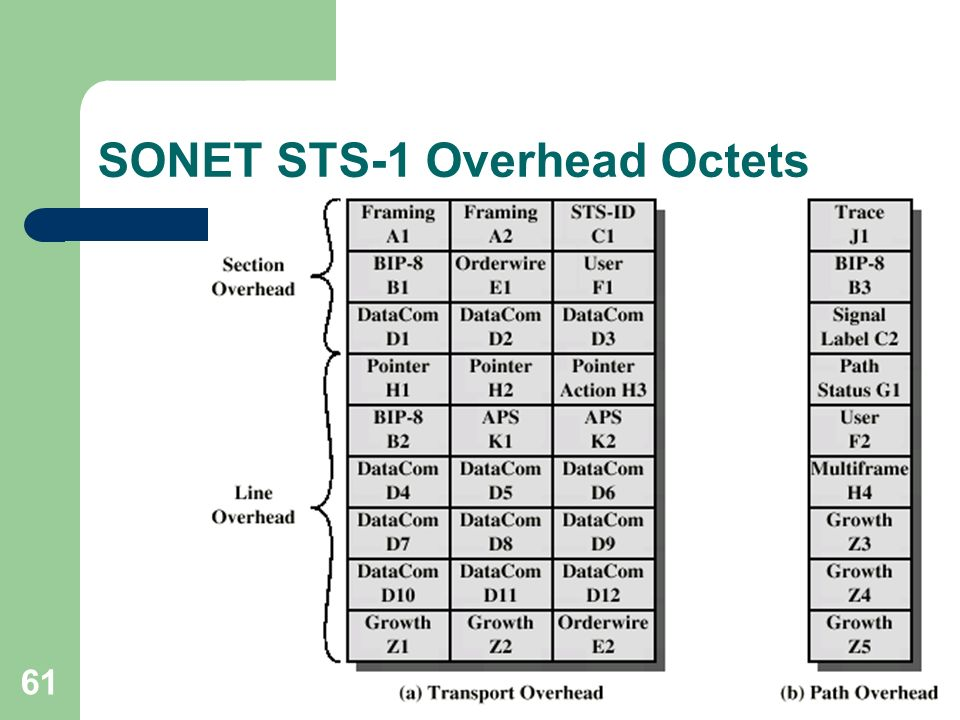 61 SONET STS-1 Overhead Octets