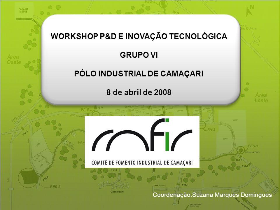 Coordenação:Suzana Marques Domingues WORKSHOP P&D E INOVAÇÃO TECNOLÓGICA GRUPO VI PÓLO INDUSTRIAL DE CAMAÇARI 8 de abril de 2008