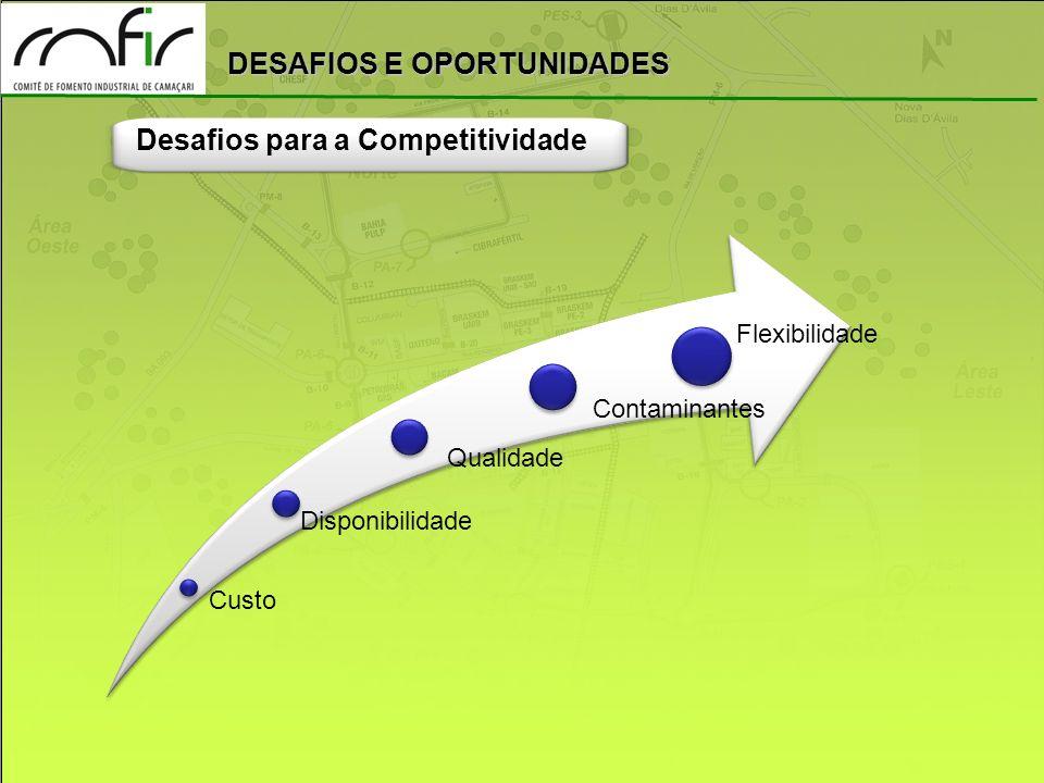 DESAFIOS E OPORTUNIDADES Desafios para a Competitividade Custo Qualidade Contaminantes Disponibilidade Flexibilidade