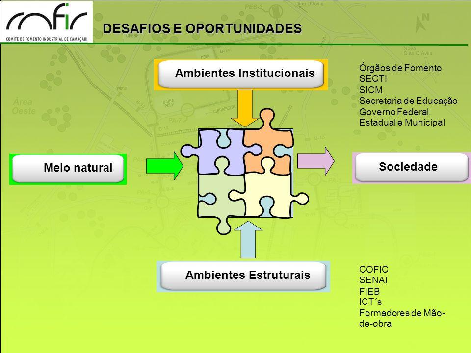 DESAFIOS E OPORTUNIDADES Ambientes Institucionais Ambientes Estruturais Meio natural Sociedade Cadeias Produtivas Órgãos de Fomento SECTI SICM Secreta