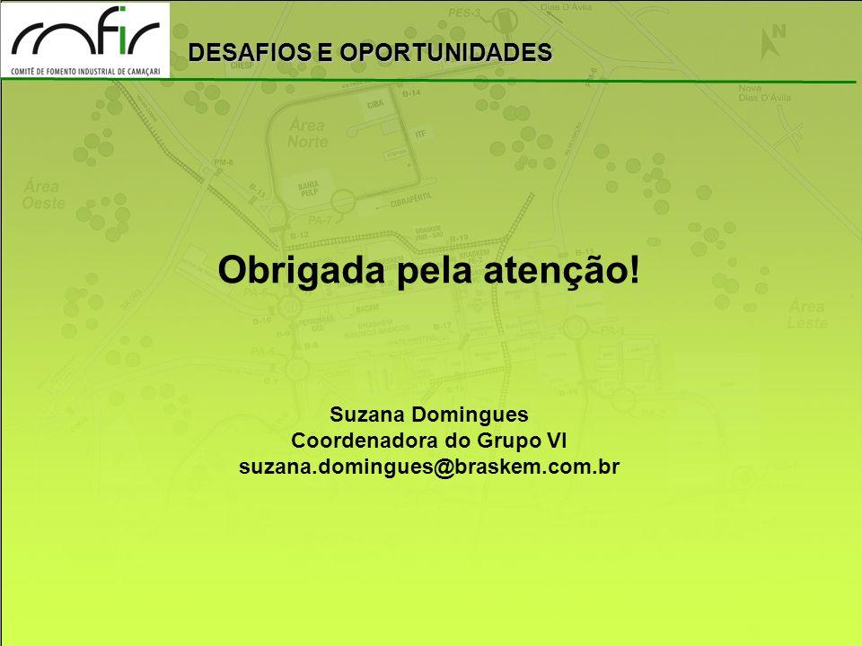 DESAFIOS E OPORTUNIDADES Obrigada pela atenção! Suzana Domingues Coordenadora do Grupo VI suzana.domingues@braskem.com.br