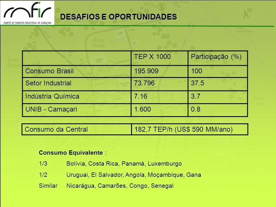 DESAFIOS E OPORTUNIDADES Consumo Equivalente : 1/3 Bolívia, Costa Rica, Panamá, Luxemburgo 1/2Uruguai, El Salvador, Angola, Moçambique, Gana Similar N