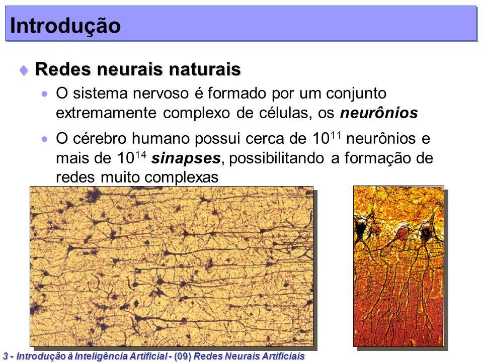 4 - Introdução à Inteligência Artificial - (09) Redes Neurais Artificiais Introdução Neurônio natural Neurônio natural Neurônios têm papel essencial na determinação do funcionamento e comportamento do corpo humano e do raciocínio