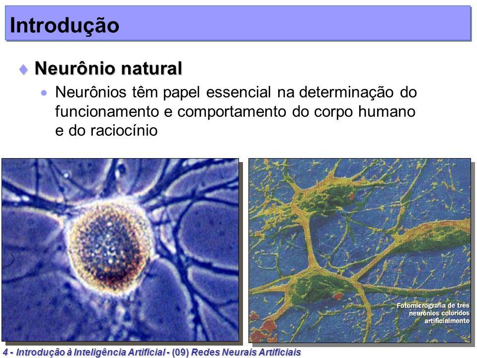 4 - Introdução à Inteligência Artificial - (09) Redes Neurais Artificiais Introdução Neurônio natural Neurônio natural Neurônios têm papel essencial n