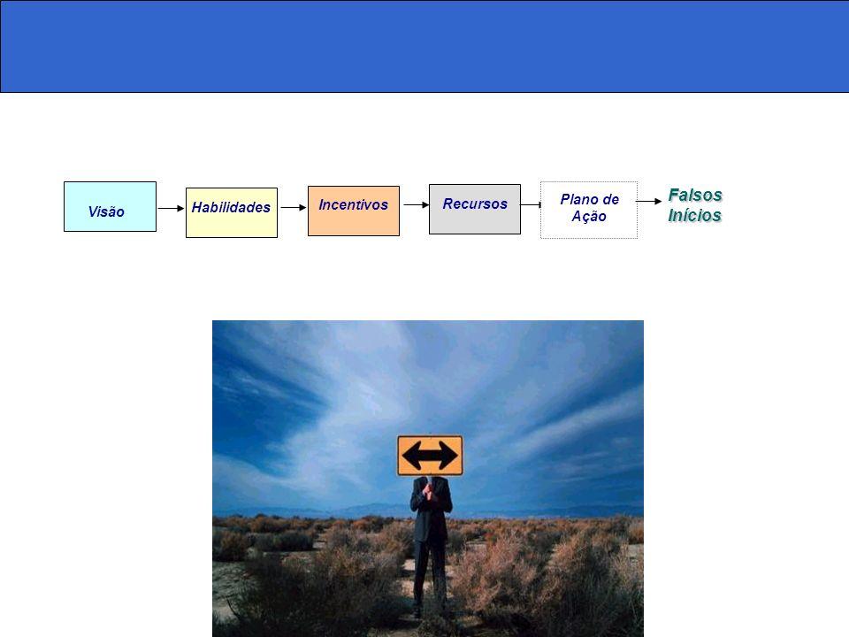 Visão Habilidades Incentivos Recursos Falsos Inícios Plano de Ação