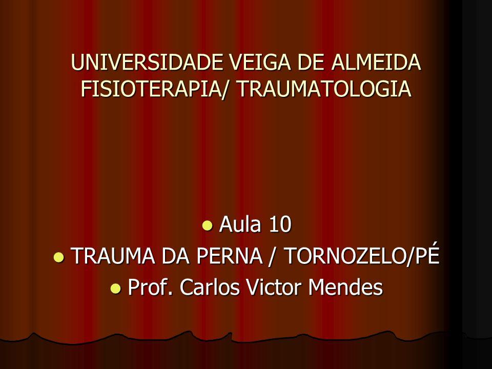 UNIVERSIDADE VEIGA DE ALMEIDA FISIOTERAPIA/ TRAUMATOLOGIA Aula 10 Aula 10 TRAUMA DA PERNA / TORNOZELO/PÉ TRAUMA DA PERNA / TORNOZELO/PÉ Prof. Carlos V