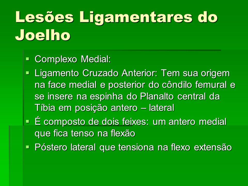 Lesões Ligamentares do Joelho Complexo Medial: Complexo Medial: Ligamento Cruzado Anterior: Tem sua origem na face medial e posterior do côndilo femur