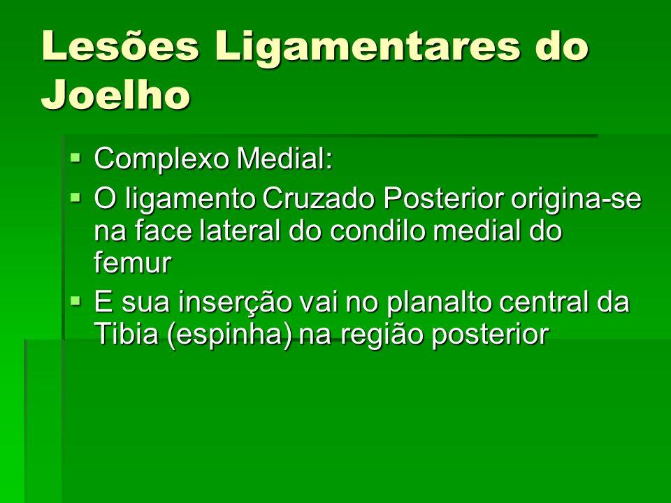 Lesões Ligamentares do Joelho Complexo Medial: Complexo Medial: O ligamento Cruzado Posterior origina-se na face lateral do condilo medial do femur O