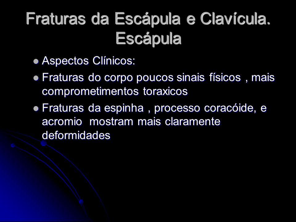 Fraturas da Escápula e Clavícula.Escápula Tratamentos: Tratamentos: Conservadores ou cirúrgicos.