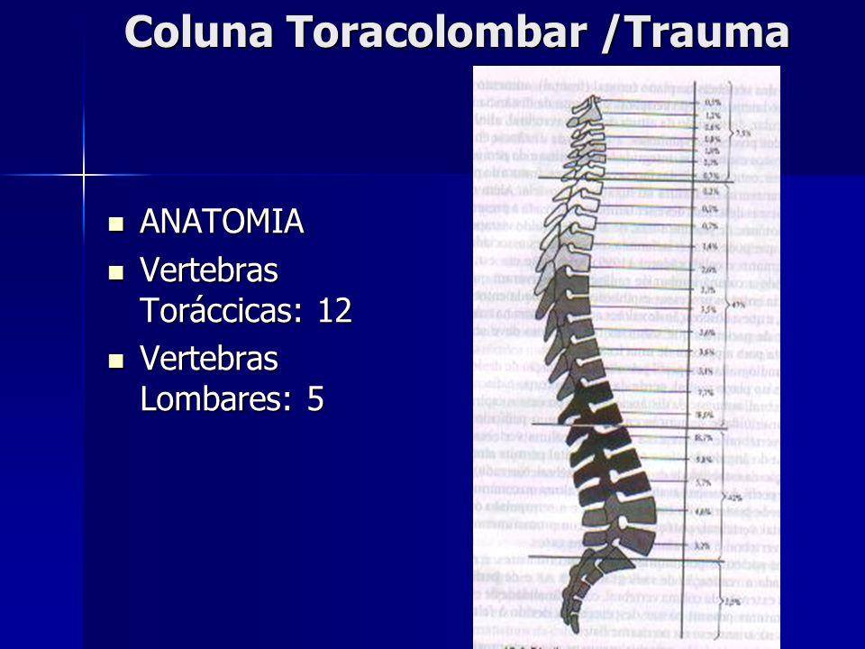 Coluna Toracolombar /Trauma ANATOMIA ANATOMIA Vertebras Toráccicas: 12 Vertebras Toráccicas: 12 Vertebras Lombares: 5 Vertebras Lombares: 5