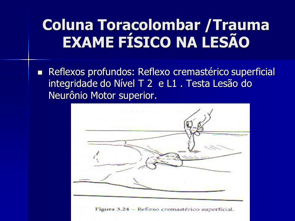 Coluna Toracolombar /Trauma EXAME FÍSICO NA LESÃO Reflexos profundos: Reflexo cremastérico superficial integridade do Nível T 2 e L1.