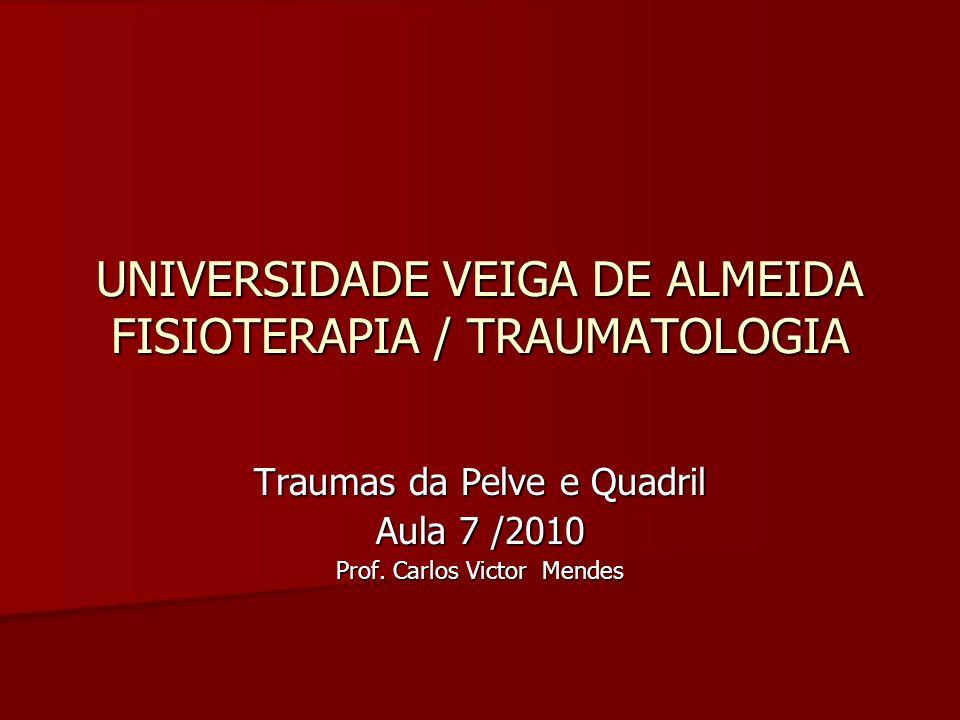 UNIVERSIDADE VEIGA DE ALMEIDA FISIOTERAPIA / TRAUMATOLOGIA Traumas da Pelve e Quadril Aula 7 /2010 Prof. Carlos Victor Mendes