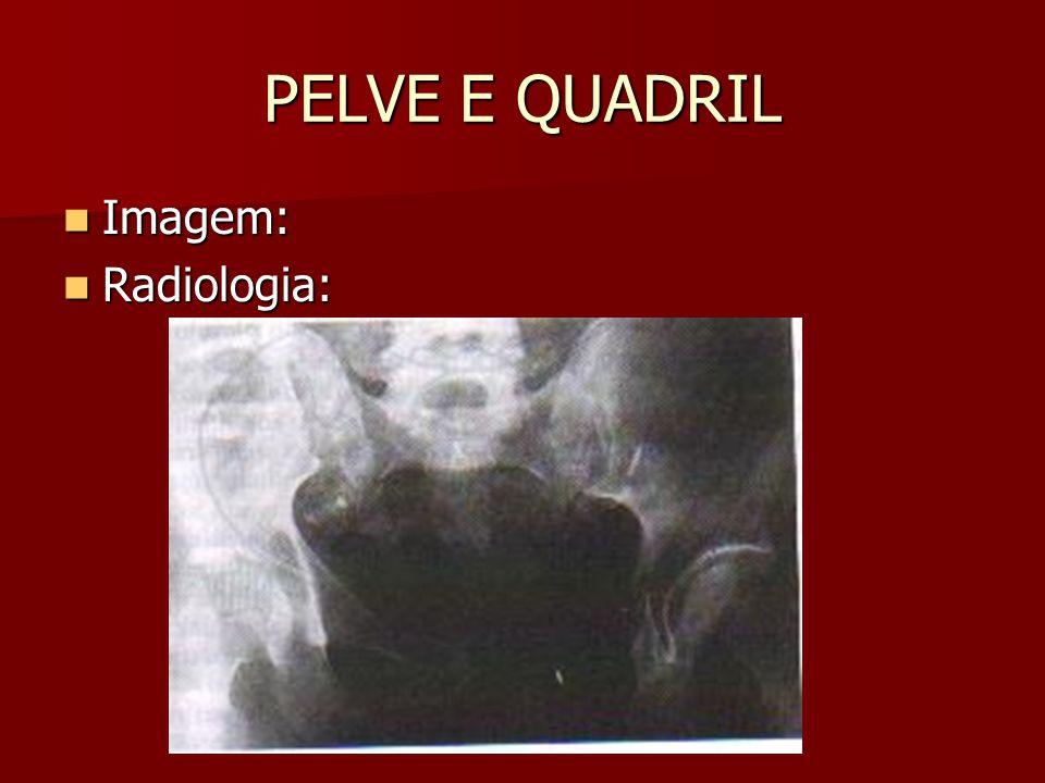 PELVE E QUADRIL Imagem: Imagem: Radiologia: Radiologia: