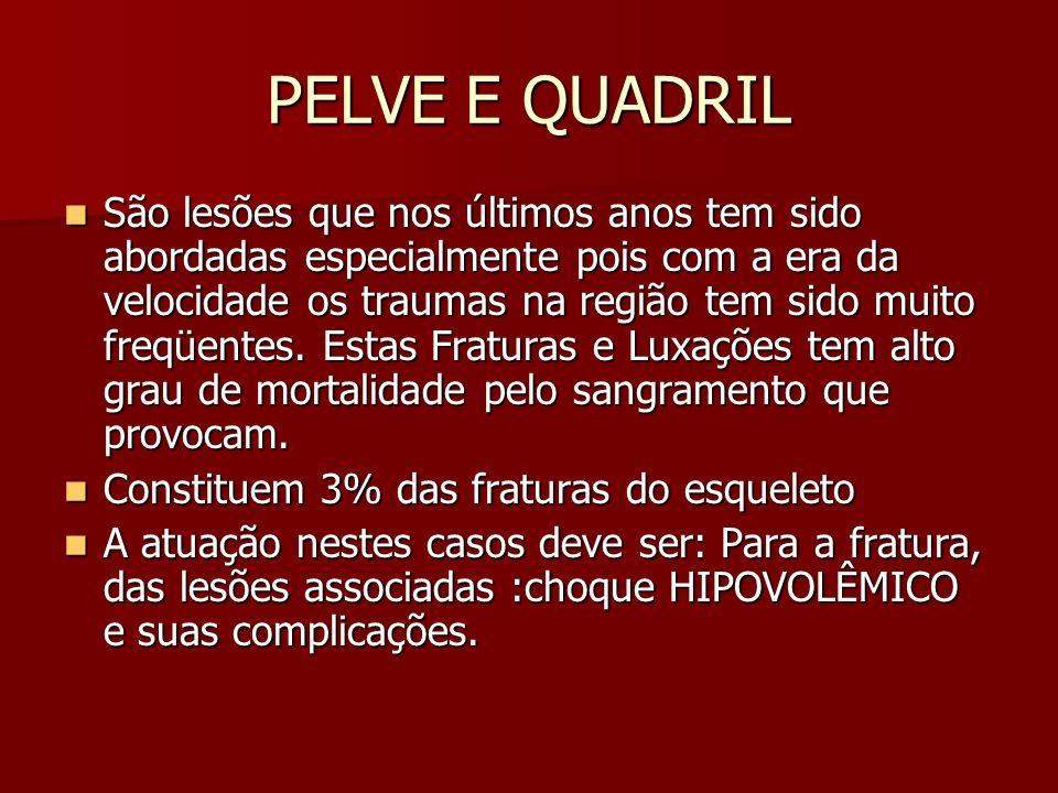 PELVE E QUADRIL Fraturas da Pelve / Fixação Sacral Cirurgias fixação com Placas: Cirurgias fixação com Placas:
