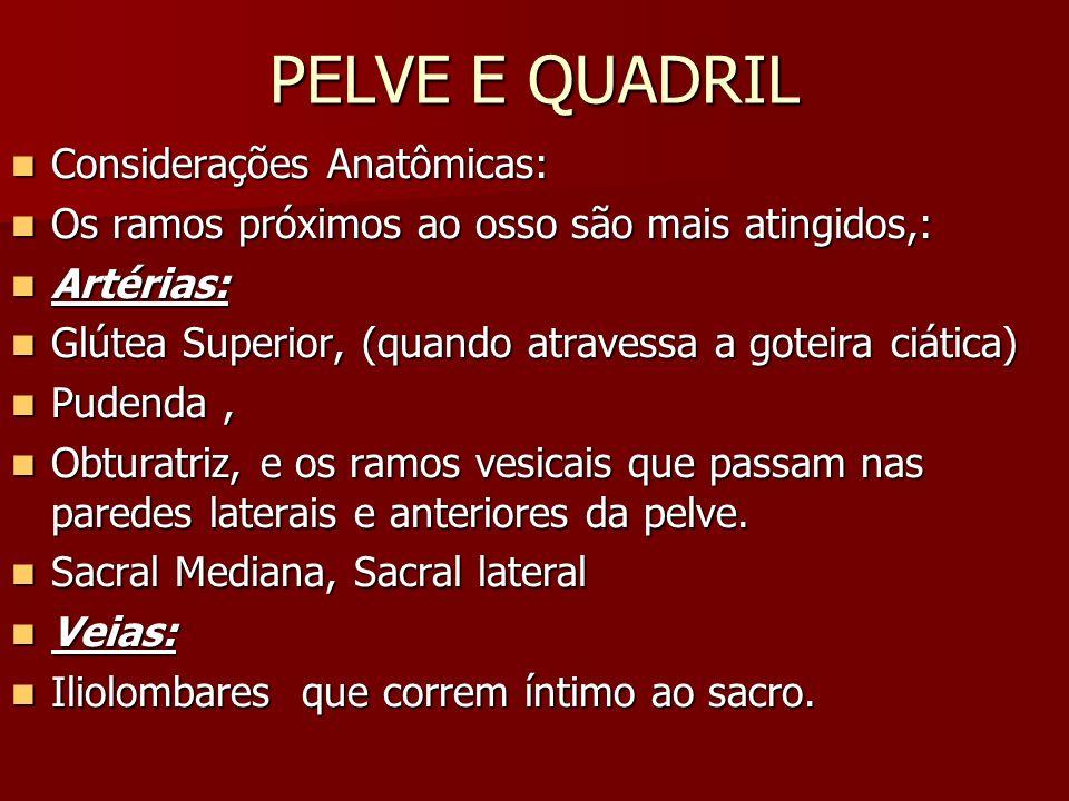 PELVE E QUADRIL Fraturas da Pelve / Sínfese Pubiana - Diastase FIXAÇÃO DA SÍNFISE FIXAÇÃO DA SÍNFISE