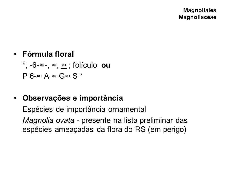 Magnoliales Magnoliaceae Fórmula floral *, -6--,, ; folículo ou P 6- A G S * Observações e importância Espécies de importância ornamental Magnolia ova