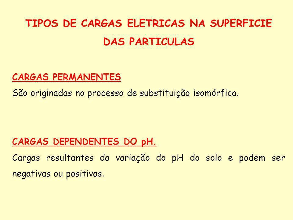TIPOS DE CARGAS ELETRICAS NA SUPERFICIE DAS PARTICULAS CARGAS PERMANENTES São originadas no processo de substituição isomórfica. CARGAS DEPENDENTES DO