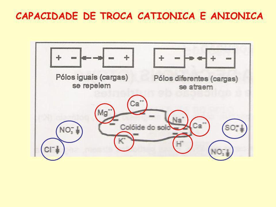 CAPACIDADE DE TROCA CATIONICA E ANIONICA