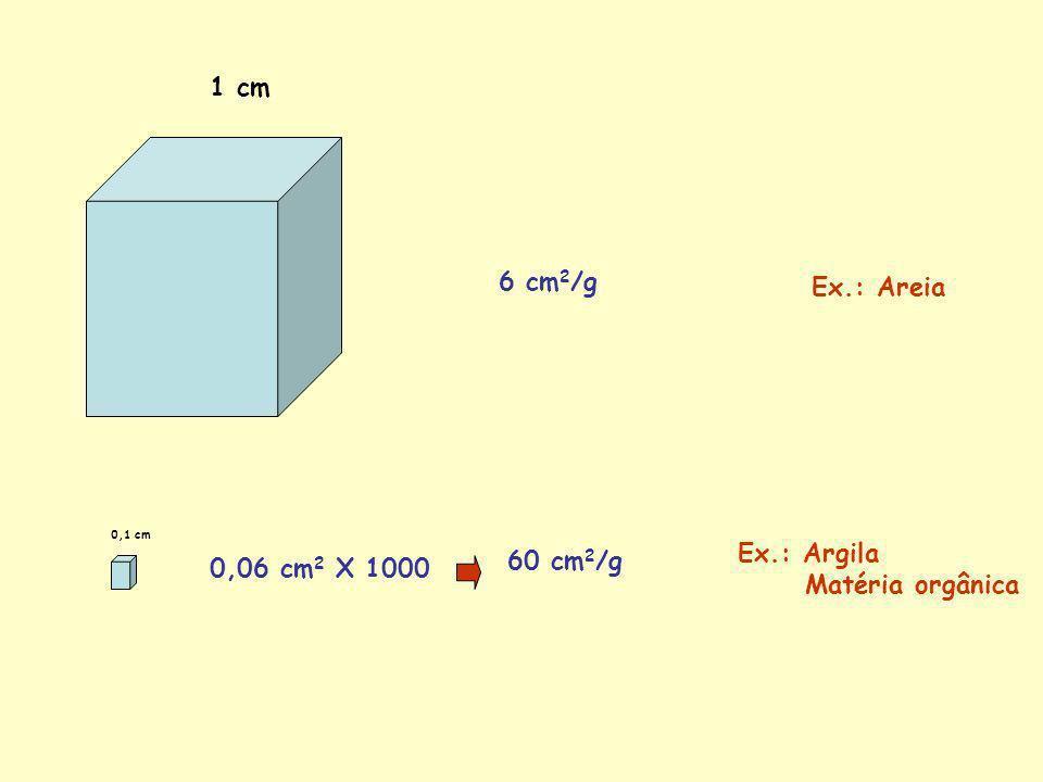 TIPOS DE CARGAS ELETRICAS NA SUPERFICIE DAS PARTICULAS CARGAS PERMANENTES São originadas no processo de substituição isomórfica.