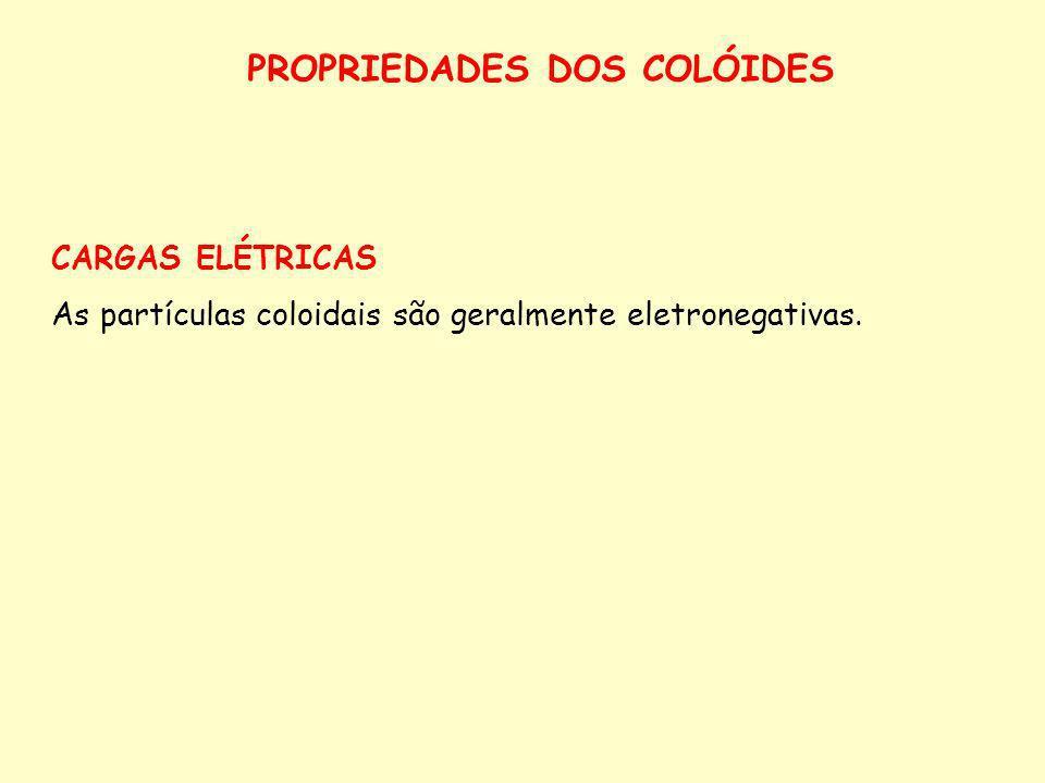 CAPACIDADE DE TROCA DE ÂNIONS (CTA) Representa a capacidade do solo de reter ânions na fase sólida do solo em formas trocáveis.