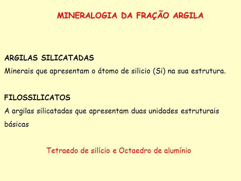 MINERALOGIA DA FRAÇÃO ARGILA ARGILAS SILICATADAS Minerais que apresentam o átomo de silicio (Si) na sua estrutura. FILOSSILICATOS A argilas silicatada