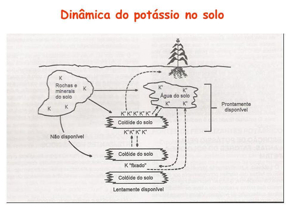 K estrutural K presente nos minerais primários e secundários.