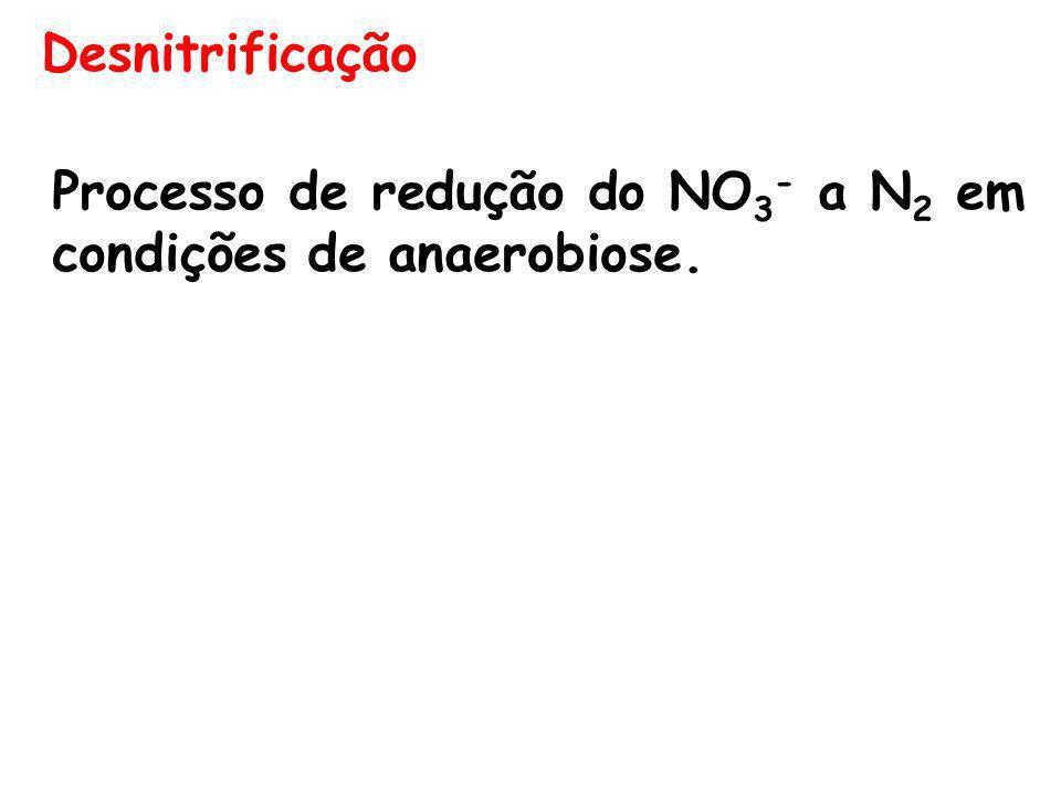 Desnitrificação Processo de redução do NO 3 - a N 2 em condições de anaerobiose.