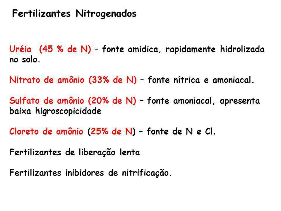 Fertilizantes Nitrogenados Uréia (45 % de N) – fonte amidica, rapidamente hidrolizada no solo. Nitrato de amônio (33% de N) – fonte nítrica e amoniaca
