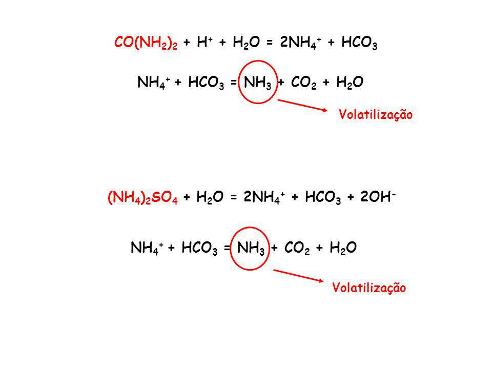 CO(NH 2 ) 2 + H + + H 2 O = 2NH 4 + + HCO 3 (NH 4 ) 2 SO 4 + H 2 O = 2NH 4 + + HCO 3 + 2OH - NH 4 + + HCO 3 = NH 3 + CO 2 + H 2 O Volatilização