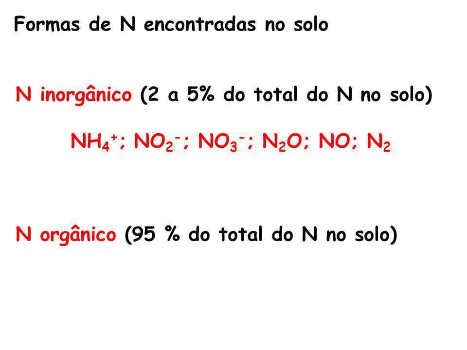 Formas de N encontradas no solo N inorgânico (2 a 5% do total do N no solo) NH 4 + ; NO 2 - ; NO 3 - ; N 2 O; NO; N 2 N orgânico (95 % do total do N no solo)