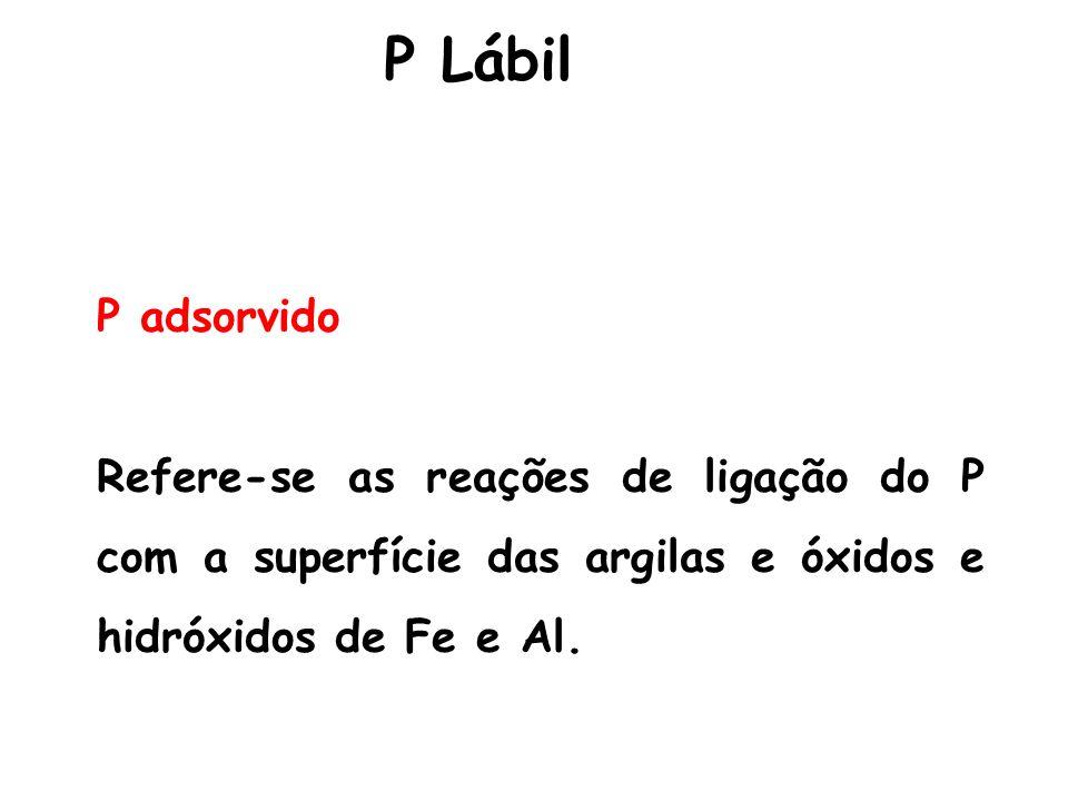 P adsorvido Refere-se as reações de ligação do P com a superfície das argilas e óxidos e hidróxidos de Fe e Al. P Lábil