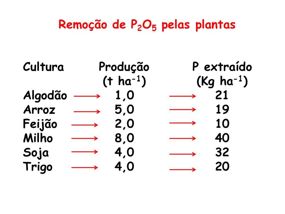 Remoção de P 2 O 5 pelas plantas Cultura Algodão Arroz Feijão Milho Soja Trigo Produção (t ha -1 ) 1,0 5,0 2,0 8,0 4,0 P extraído (Kg ha -1 ) 21 19 10