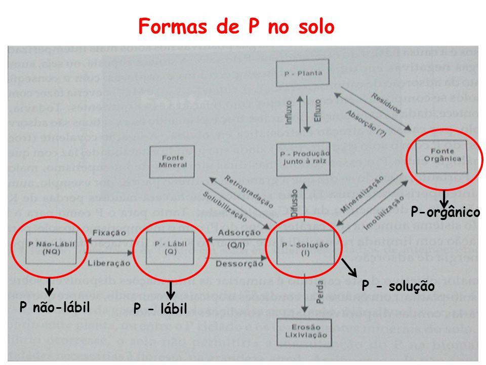 Formas de P no solo P não-lábil P - lábil P - solução P-orgânico