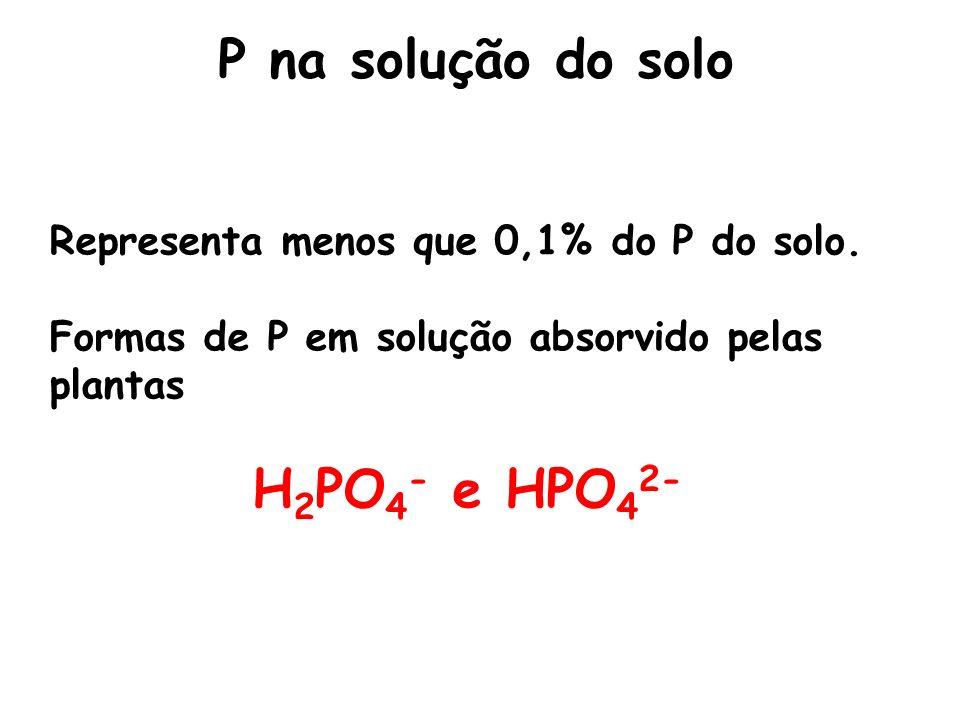 P na solução do solo Representa menos que 0,1% do P do solo. Formas de P em solução absorvido pelas plantas H 2 PO 4 - e HPO 4 2-
