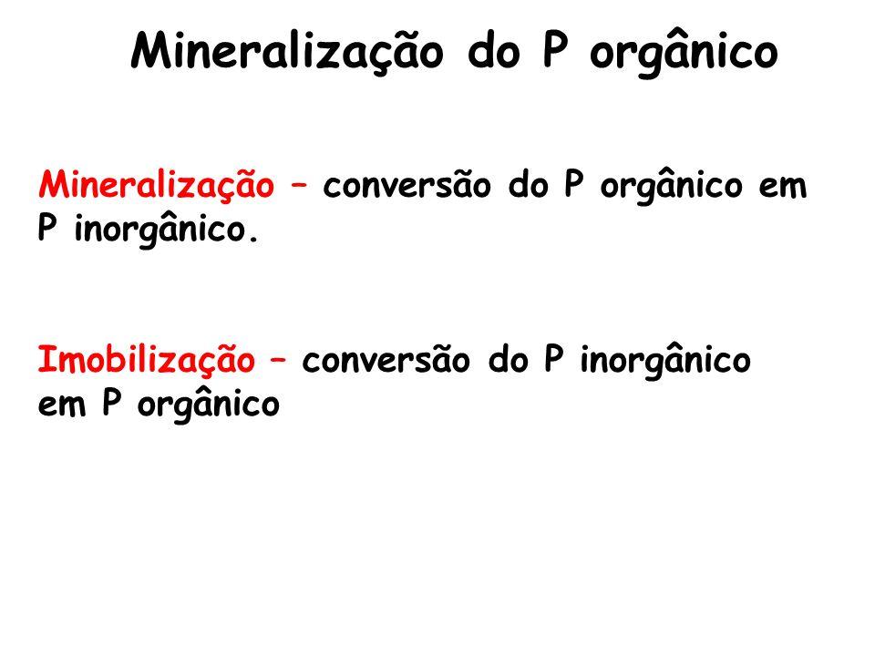 Mineralização do P orgânico Mineralização – conversão do P orgânico em P inorgânico. Imobilização – conversão do P inorgânico em P orgânico
