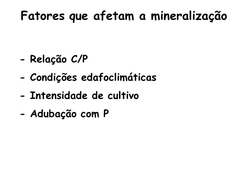 Fatores que afetam a mineralização - Relação C/P - Condições edafoclimáticas - Intensidade de cultivo - Adubação com P