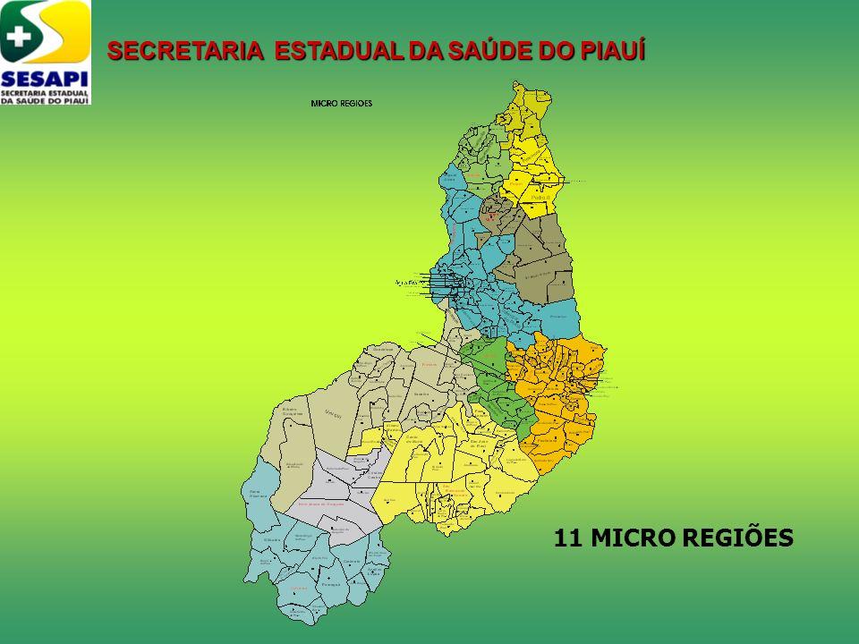 11 MICRO REGIÕES SECRETARIA ESTADUAL DA SAÚDE DO PIAUÍ