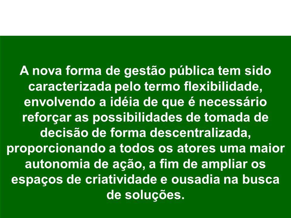 A nova forma de gestão pública tem sido caracterizada pelo termo flexibilidade, envolvendo a idéia de que é necessário reforçar as possibilidades de t