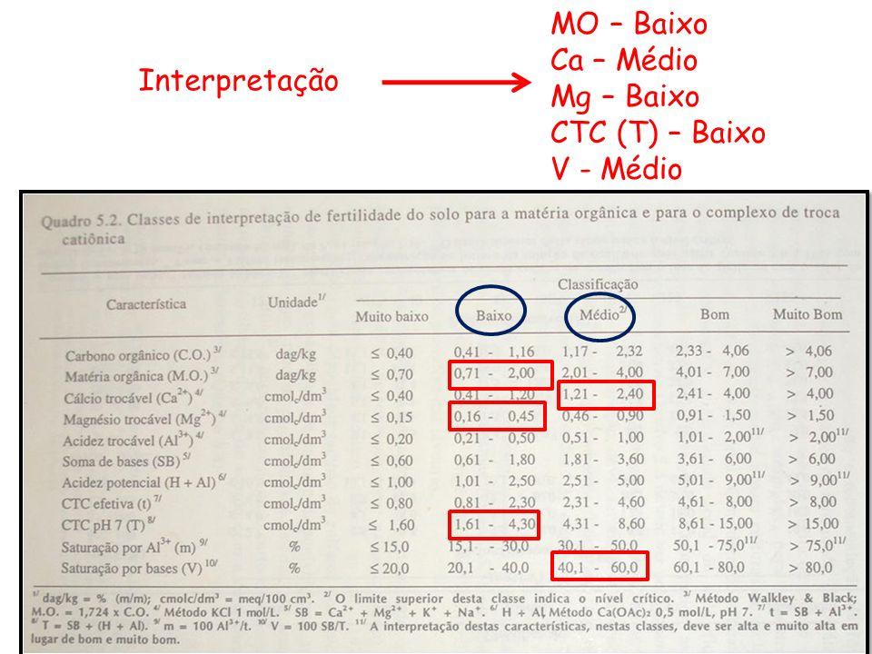 MO – Baixo Ca – Médio Mg – Baixo CTC (T) – Baixo V - Médio Interpretação