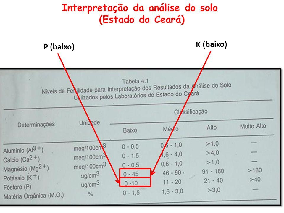 Interpretação da análise do solo (Estado do Ceará) P (baixo) K (baixo)