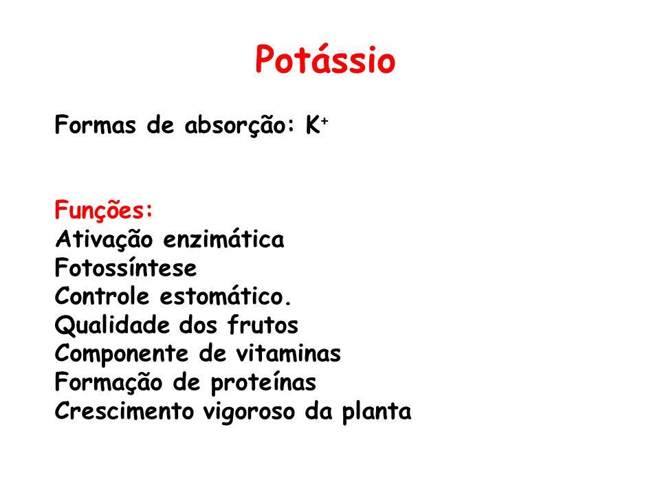 Potássio Formas de absorção: K + Funções: Ativação enzimática Fotossíntese Controle estomático. Qualidade dos frutos Componente de vitaminas Formação