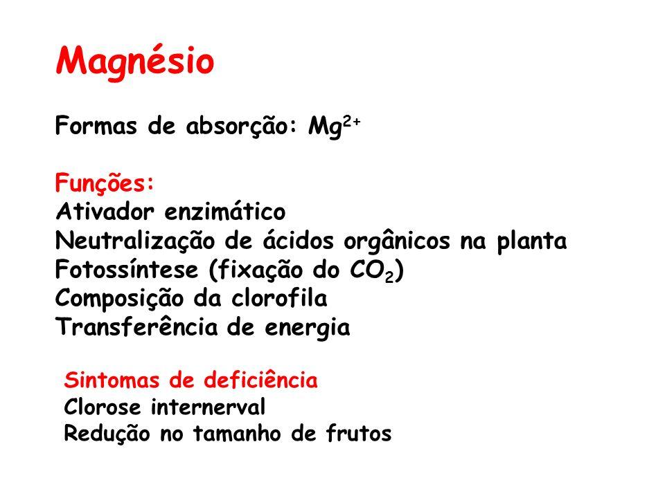 Magnésio Formas de absorção: Mg 2+ Funções: Ativador enzimático Neutralização de ácidos orgânicos na planta Fotossíntese (fixação do CO 2 ) Composição