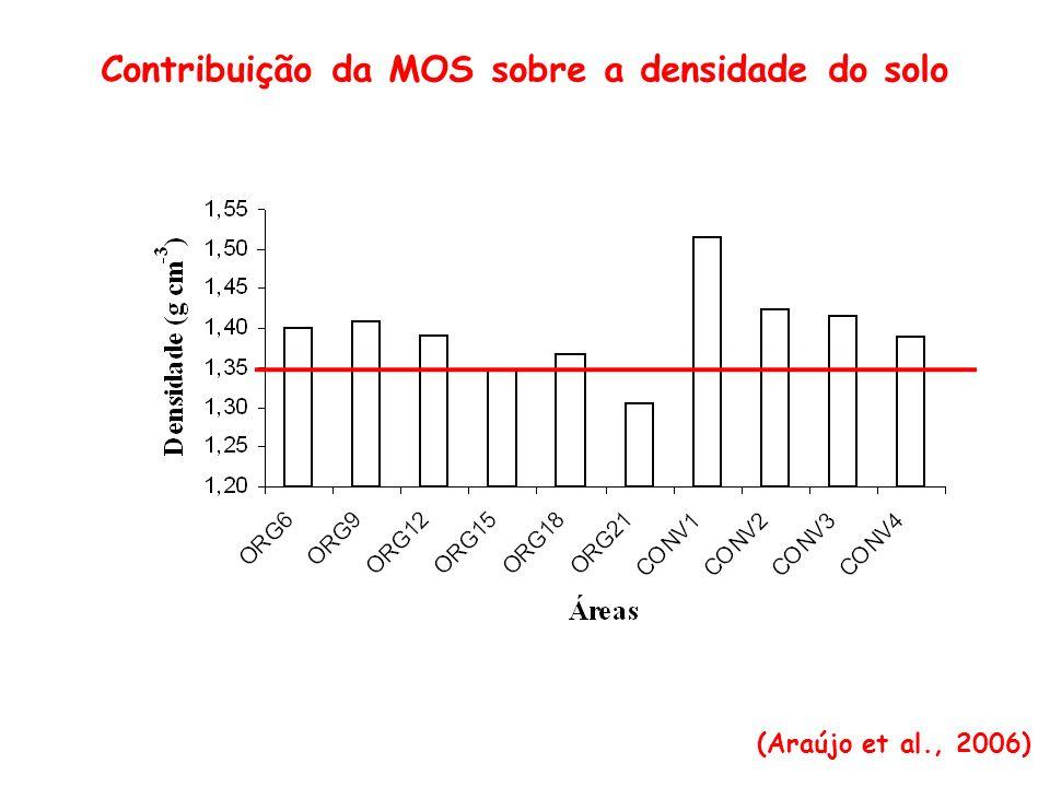 Fatores do solo (biológicos) Atividade microbiana Relações simbióticas Atividade enzimática