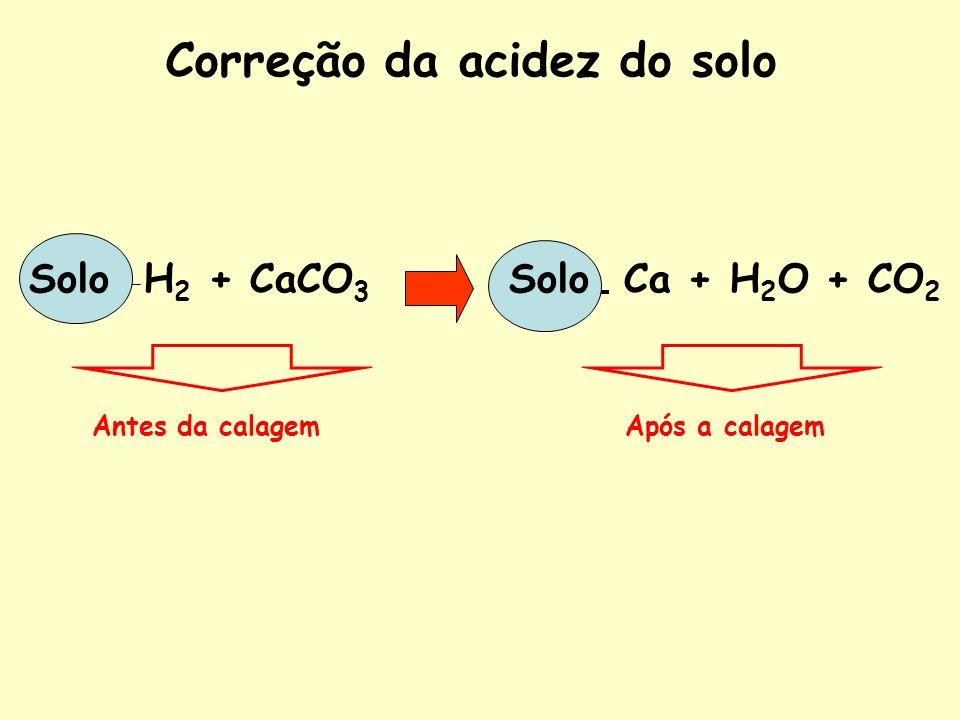 Correção da acidez do solo Solo H 2 + CaCO 3 Solo Ca + H 2 O + CO 2 Antes da calagemApós a calagem